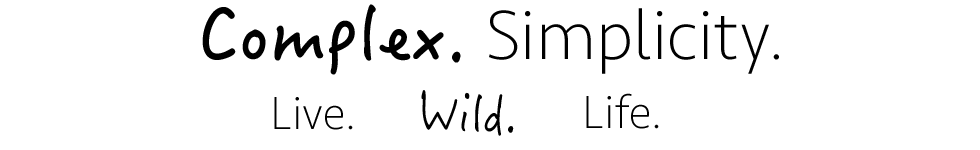 David Sandel Website